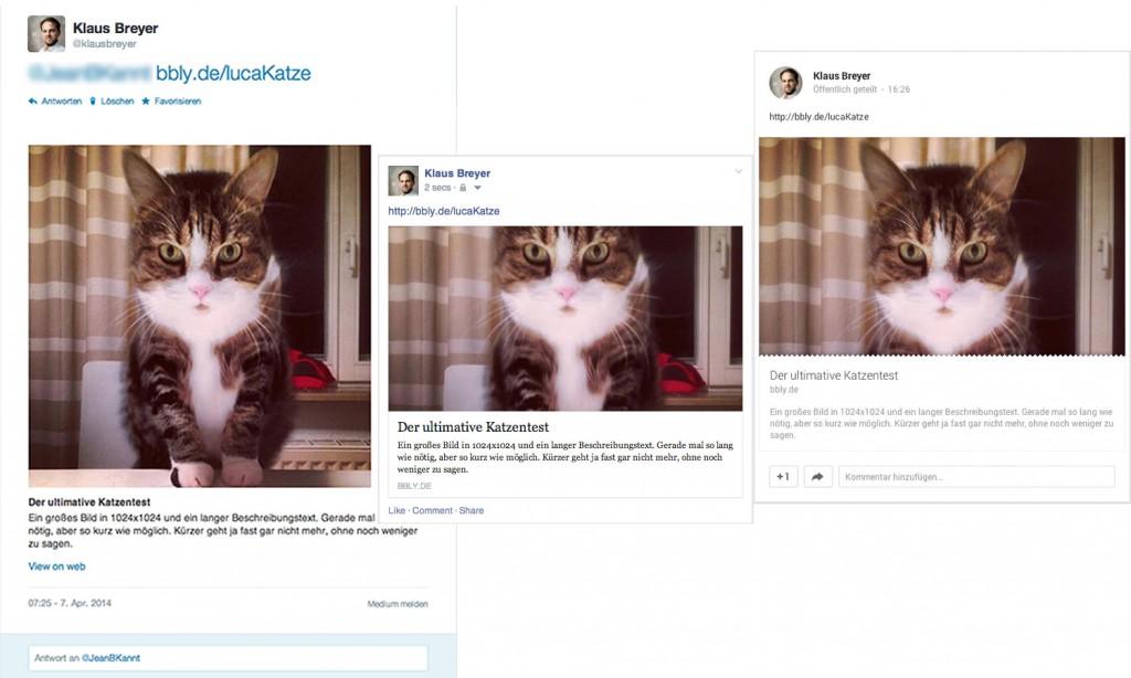 Verschiedene Bildausschnitte in verschiedenen Social Media Networks