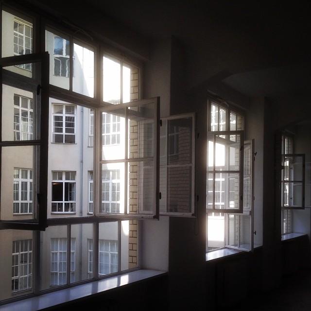 buddybrand Fensterfront